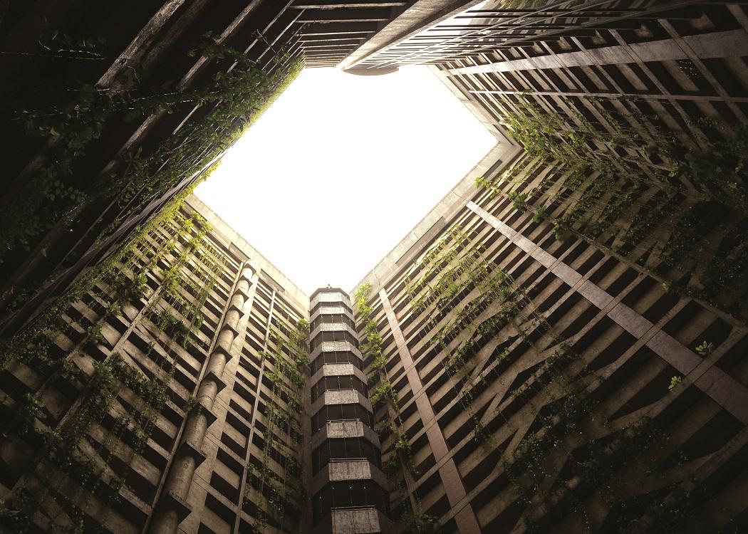 nature-building-high-rise-plants