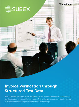 Invoice-Verification-through-Structured-Test-Data